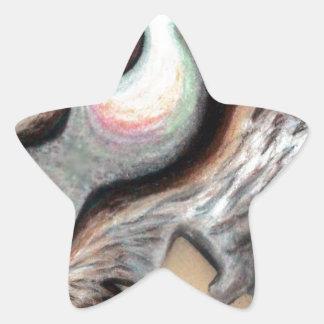 Produtos de Pari Chumroo Adesito Estrela