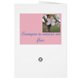 Professando seu amor no espanhol, cartão comemorativo