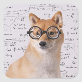 Professor Barkley Quadrado Etiqueta (lustrosa)