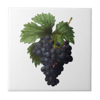 Profundamente - azulejo roxo de Redoute das uvas