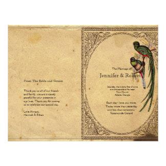 Programa elegante do casamento do pássaro de quetz panfletos personalizado