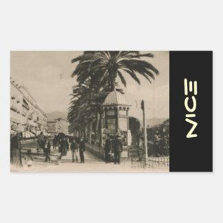 Promonade agradável Photograver 1910 Adesivo Retangular