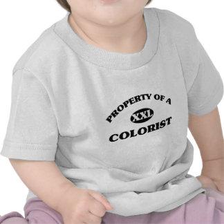 Propriedade de um COLORIST Tshirt