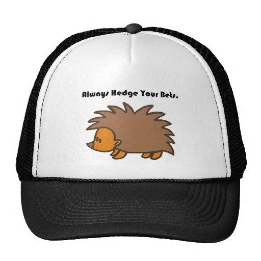 Proteja seu desenho dos desenhos animados do ouriç boné