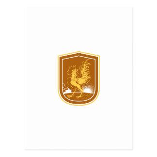 Protetor do Sunburst da casa do galo da galinha Cartao Postal