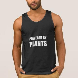 Psto por plantas