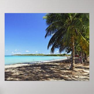 Puerto Rico, Fajardo, ilha de Culebra, sete mares Pôsteres