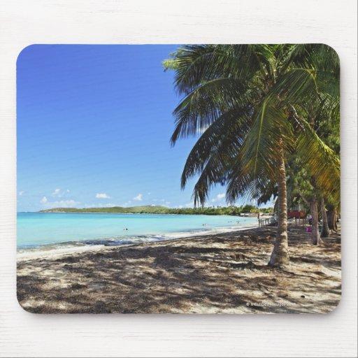 Puerto Rico, Fajardo, ilha de Culebra, sete mares Mousepad
