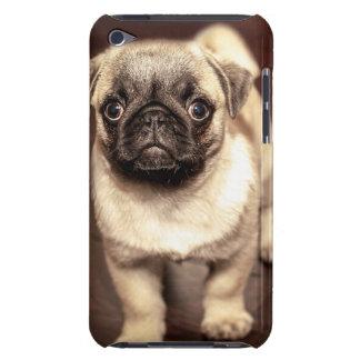 Pug bonito do filhote de cachorro, cão, animal de capa para iPod touch