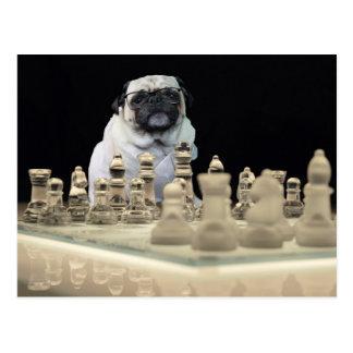 """Pug """"sexy"""" de Misha que joga a xadrez com vidros Cartão Postal"""