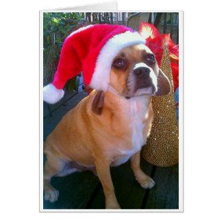 Puggle! Cartão de Natal