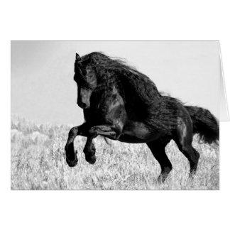 Pulos do garanhão do frisão - cartão do cavalo