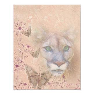 Puma e borboletas impressão de foto