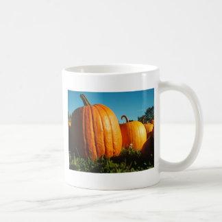Pumpkins_Hancock_Shaker_village_2418 Caneca De Café