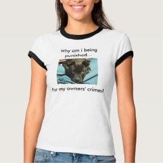 Puna proprietários, não camisa dos cães