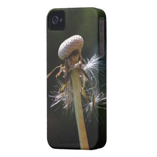 Pusteblume - Dandelion Capinha iPhone 4