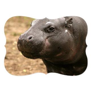 pygmy-hippo-1 convite