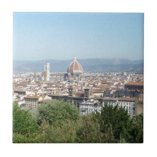 Quadrado de Michelangelo do domo de Italia