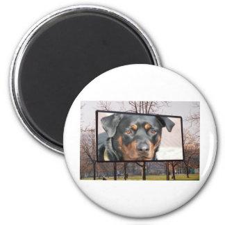 Quadro de avisos de Rottweiler Rottie no parque Ímã Redondo 5.08cm