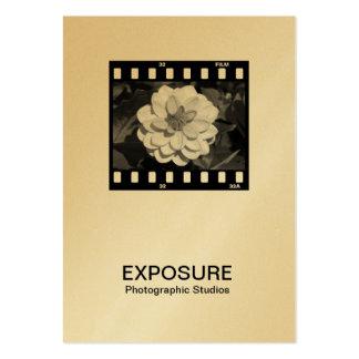 quadro de filme 01 de 35mm (ouro) modelos cartoes de visita