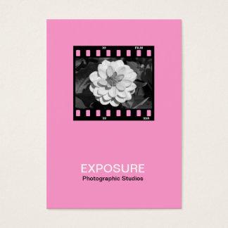 quadro de filme 01 de 35mm - rosa cartão de visitas