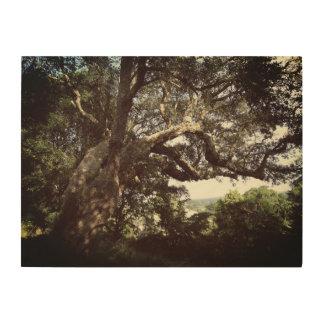 Quadro De Madeira Arte de madeira da parede da foto da árvore