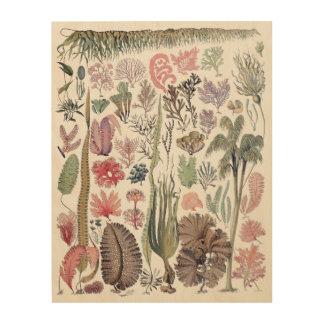 Quadro De Madeira Arte de madeira da parede do impressão botânico