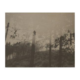 Quadro De Madeira Arte enevoada preto e branco da parede da madeira