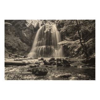 Quadro De Madeira Cachoeira de Josefsthaler