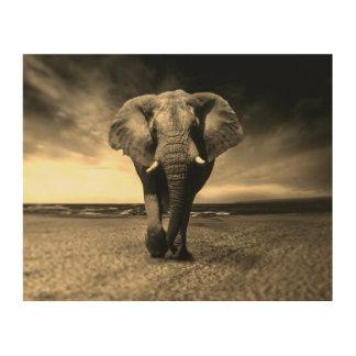 Quadro De Madeira Elefante de Bull selvagem majestoso no Sepia