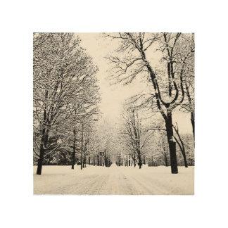 Quadro De Madeira Estrada do inverno