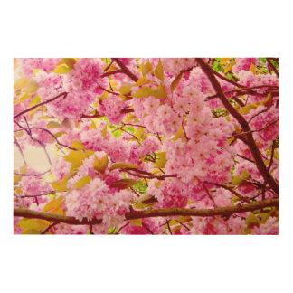 Quadro De Madeira Flor de cerejeira