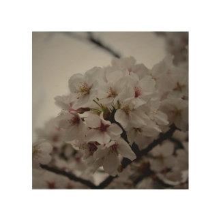 Quadro De Madeira Flores de cerejeira japonesas