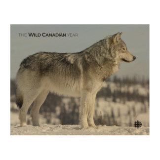 Quadro De Madeira Inverno - lobo