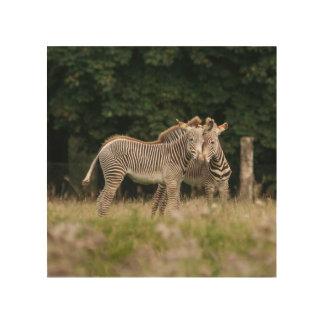 Quadro De Madeira Madeira Wallart de duas zebras