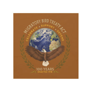 Quadro De Madeira O ato do Tratado das aves migratórias - 100 anos