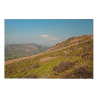Quadro De Madeira O distrito máximo de Derbyshire