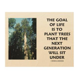 Quadro De Madeira O objetivo da vida é plantar árvores que a próxima