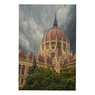 Quadro De Madeira O parlamento que constrói Composit