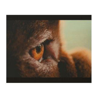Quadro De Madeira Olho francês de madeira do Mastiff (macro)