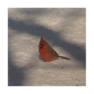 Quadro De Madeira Pássaro, cópia de madeira da foto