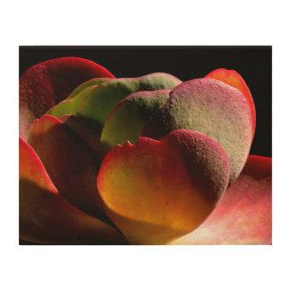 Quadro De Madeira Planta de deserto do Succulent