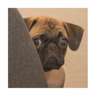 Quadro De Madeira Pug que espreita em torno da cadeira