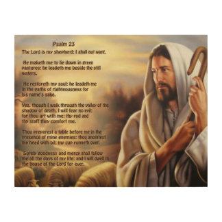 Quadro De Madeira Salmo 23