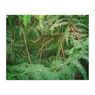 Quadro De Madeira Samambaias da floresta no painel de madeira de