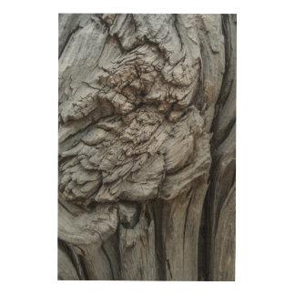Quadro De Madeira Textura abstrata do tronco de árvore
