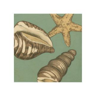 Quadro De Madeira Trio pequeno de Shell na cerceta