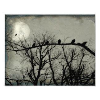 Quantos corvos podem você encontrar impressão de foto