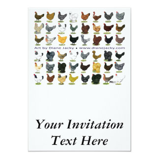 Quarenta e oito Promo da galinha Convite 12.7 X 17.78cm