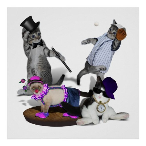 Quatro gatinhos no jogo posteres